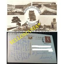 POSTCARD DUNDEE ANGUS 1957 SCOTLAND ESCOCIA POSTAL CAT GATO CHAT CC04312 UK