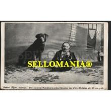 POSTKARTE DEUTSCHLAND JAHRE 1920 ROBERT JÄGER BARMEN MUNDHARMONIKA GERMANY MUSIC ALEMANIA MUSICA ARMONICA  CC05771 DE
