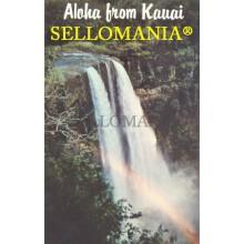 POSTCARD WAILUA FALLS ISLAND OF KAUAI LIHUE TOWN HAWAII CC05022 USA