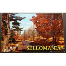POSTCARD THE ALLEGHENY MOUNTAINS ARE BEAUTIFUL IN ANY SEASON  CC05024 USA