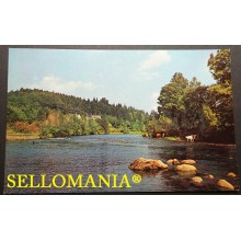 POSTCARD AVONMORE AND AVONBERG RIVERS AVOCA WICKLOW  IRELAND IRLANDA CC05040 UK