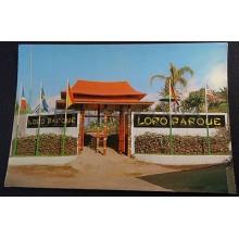 ANTIGUA POSTAL TENERIFE LORO PARQUE ISLAS CANARIAS POSTCARD POSTKARTE    CC03672