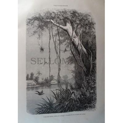 ANTIQUE ENGRAVED NEW GRANADA 1876 VIEW OF CAUCA 19th CENTURY PRINT 043CC