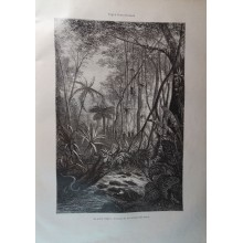 ANTIQUE ENGRAVED NEW GRANADA 1876 THE BACKWOODS 19th CENTURY PRINT 046CC