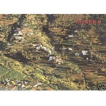 POSTAL ISLA DE LA GOMERA CANARIAS VALLE DEL GRAN REY POSTCARD POSTKARTE  CC00504