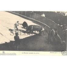 ANTIGUA POSTAL TOROS REVERTE PASANDO MULETA TORERO BULLFIGHTER POSTCARD  CC00165